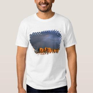 Cathedral Rocks in Sedona Arizona Tee Shirts