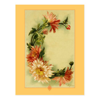 Catherine Klein Flower Alphabet C Chrysanthemum Postcard