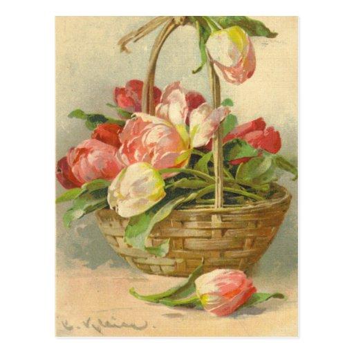 Catherine Klein Vintage Postcard Reproduction