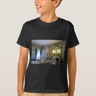 Catherine's Great Palace Tsarskoye Selo T-Shirt