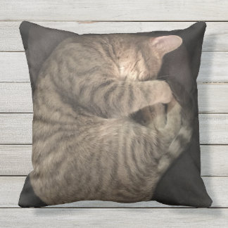 Catnap Outdoor Pillow