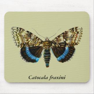 Catocala fraxini mouse pad