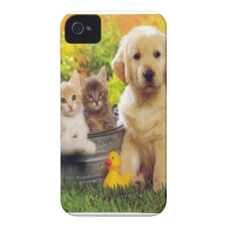 Cats and dogs case 1 Case-Mate iPhone 4 cases