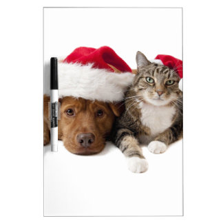 Cats and dogs - Christmas cat - christmas dog Dry Erase Board