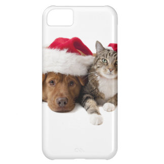 Cats and dogs - Christmas cat - christmas dog iPhone 5C Case