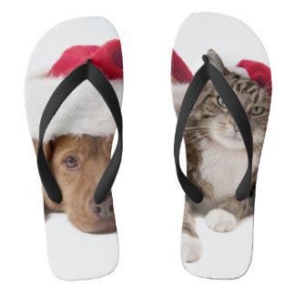 Cats and dogs - Christmas cat - christmas dog Thongs