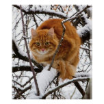 cats_and_snow_ (14) print
