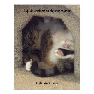 Cats are Liquids Poster