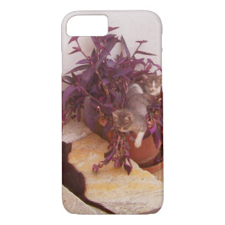 cats are playing iPhone 8/7 case