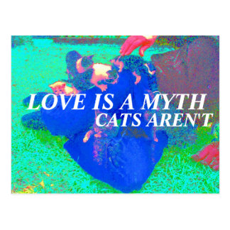 cats are real postcard