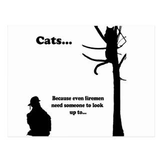 Cats...Because even Firemen Postcard