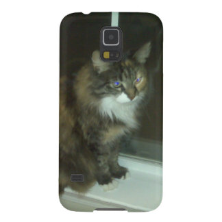 CATS GALAXY NEXUS CASES
