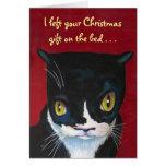 Cat's Christmas Gift