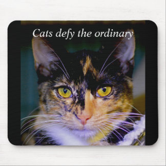 """Cats defy the ordinary"" Ashes Mouse Pad"