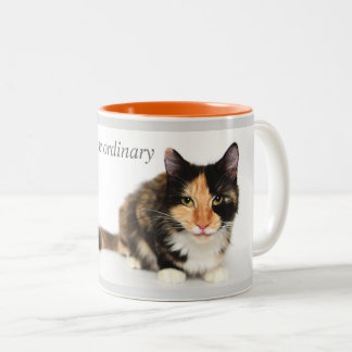 """Cats defy the ordinary"" Coffee Mug in orange"