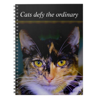 """Cats defy the ordinary"" Notebook"