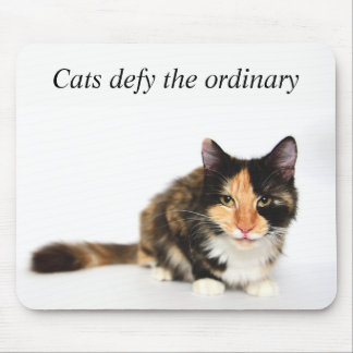 """Cats defy the ordinary"" Phoebe Mouse Pad"