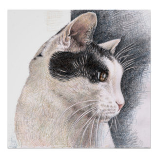 Cats Eye - cat view Poster