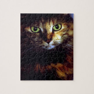 Cats Eyes Jigsaw Puzzle
