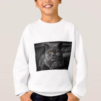 Cat's Eyes Sweatshirt
