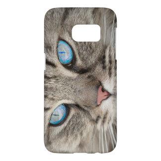 Cat's Face Blue - Eyed Cat