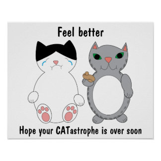 Cats Feel Better Encouragement Customizable Poster
