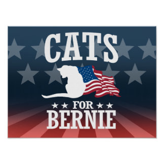 CATS FOR BERNIE SANDERS POSTER