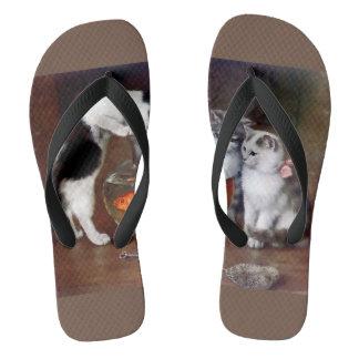 Cats Goldfish Kittens Cute Fishing Thongs