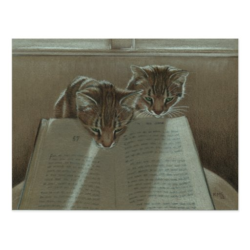 Cats helping me read book postcard