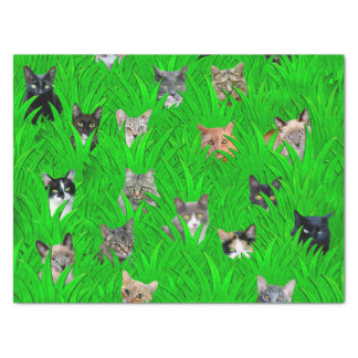 Cats in Grass Tissue Paper