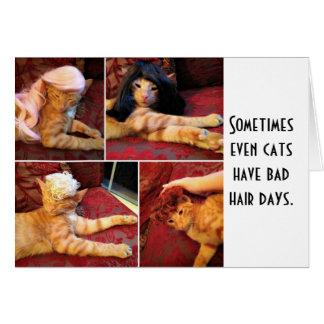Cats in wigs (blank inside) card