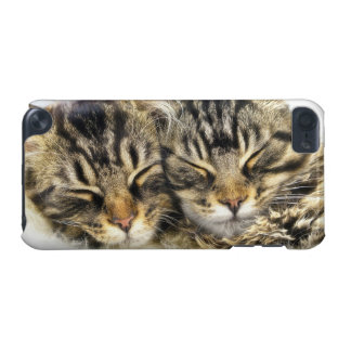 Cats iPod Touch (5th Generation) Cover