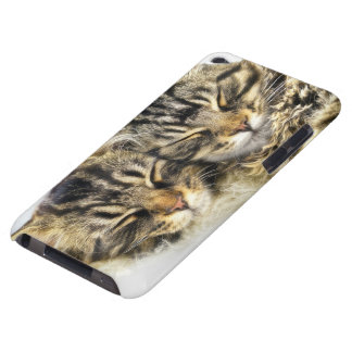 Cats iPod Touch Case