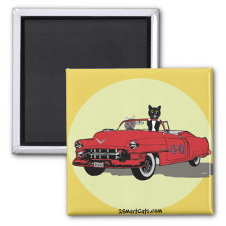 Cats Joy Riding Square Magnet