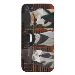 Cats/Kitties in Black Case For iPhone 5/5S