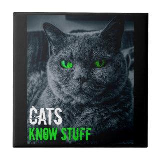Cats Know Stuff Ceramic Tile
