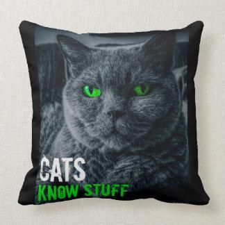 Cats Know Stuff Cushion