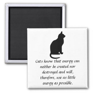 Cats know that energy can neither be created nor d square magnet