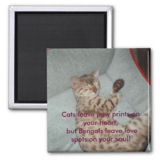 Cats leave paw prints on your heart, but... magnet