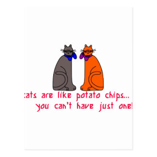 Cats Like Chips Postcard