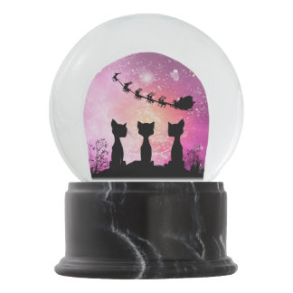 Cats looks to the sky to Santa Claus Snow Globe