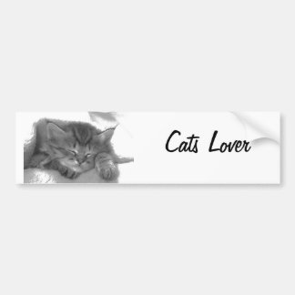 Cats Lover Bumper Sticker