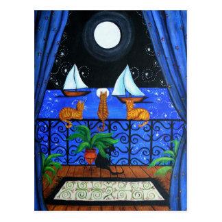 Cats Magical Night Nite Magic Postcard