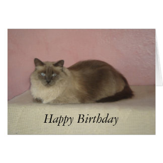 Cat's Meow Birthday Card