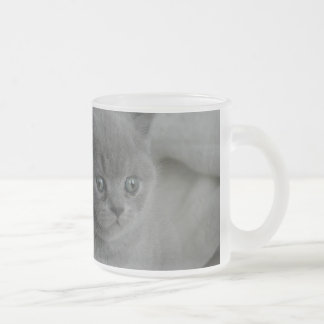 cats frosted glass mug