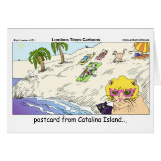 Cats Of Catalina Island Funny Gifts Cards & Tees