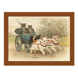 """""""Cats on a Coach Ride"""" Vintage Postcard"""