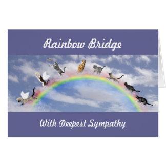 Cats On Rainbow Bridge Card