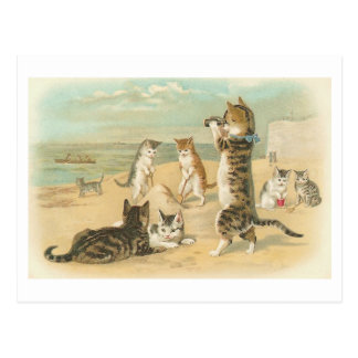 """""""Cats on the Beach """" Vintage Postcard"""