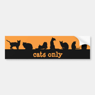 cats only bumper sticker